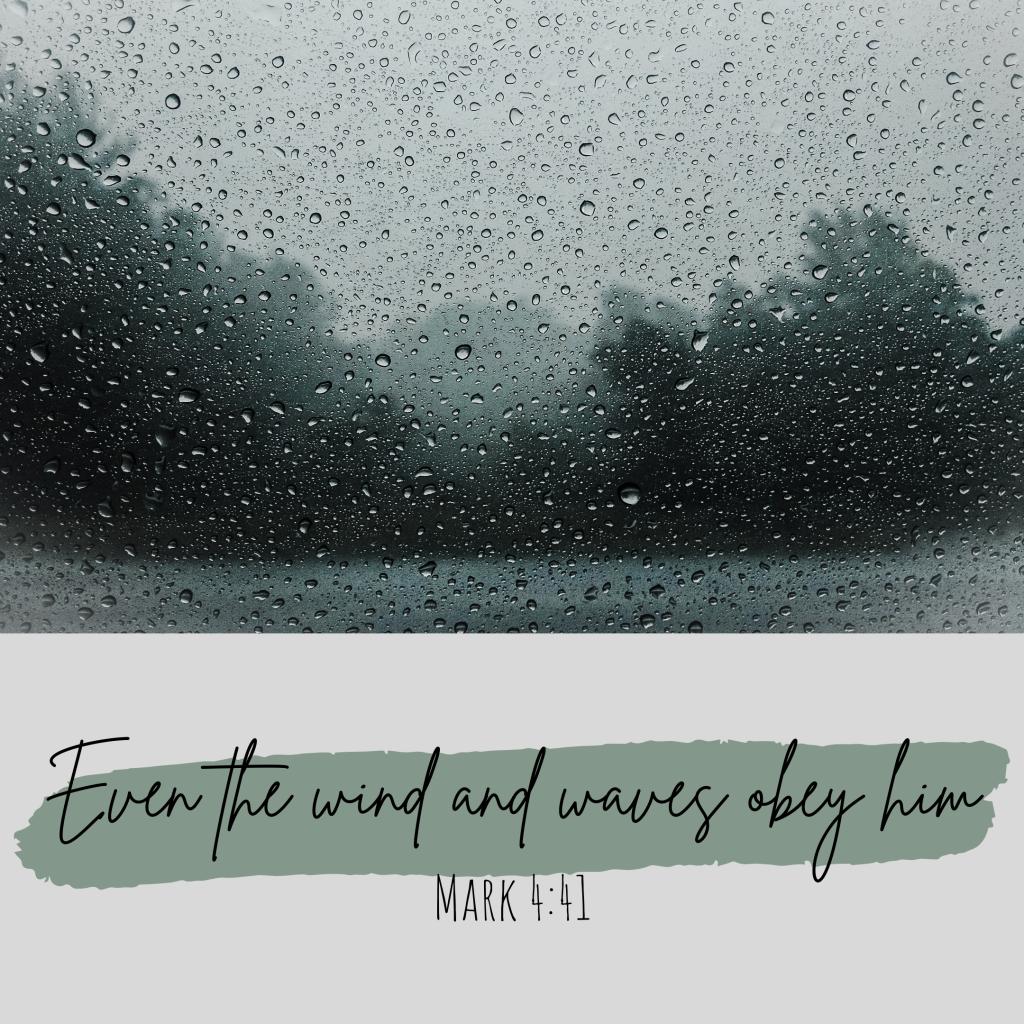 mark 4:41