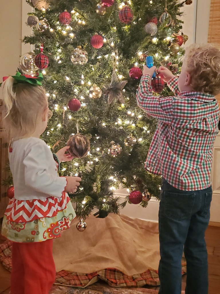 Grey and Harlow decking the halls